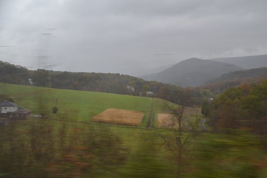 Western Maryland Scenic Railroad: scenic views