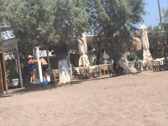 Σκάλα Καλλονής, Ελλάδα: the bar behind the trees