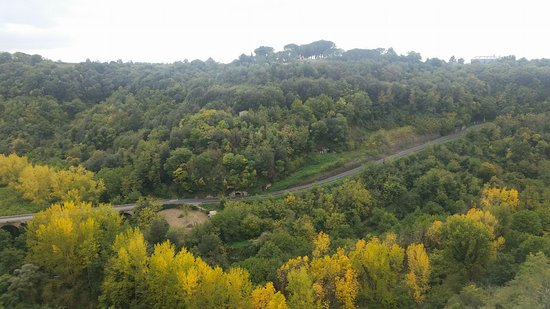 Rome in Limousine: Tuscany countryside