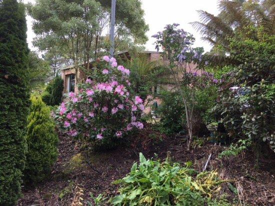 New Norfolk, Australia: photo1.jpg