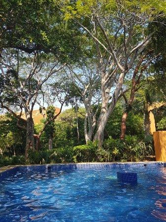 Las Brisas Ixtapa: 20171102_142531_large.jpg