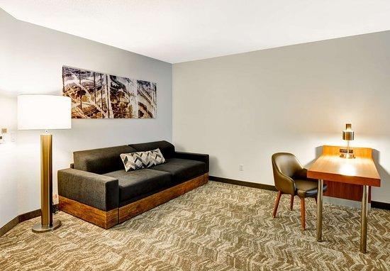 Columbia, MD: Queen/Queen Studio Suite - Living Area