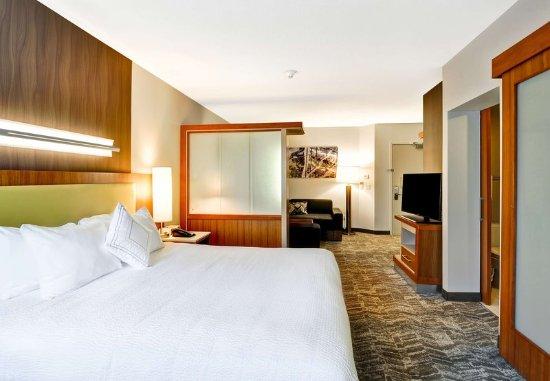 Columbia, MD: King Studio Suite - Sleeping Area