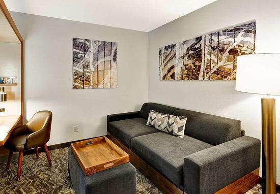 Columbia, MD: King Studio Suite- Living Area