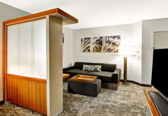 Columbia, MD: King Studio Suite - Living Area