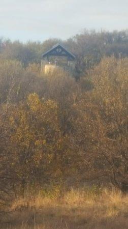 Arbor Hills Nature Preserve: 20171110_163216_large.jpg