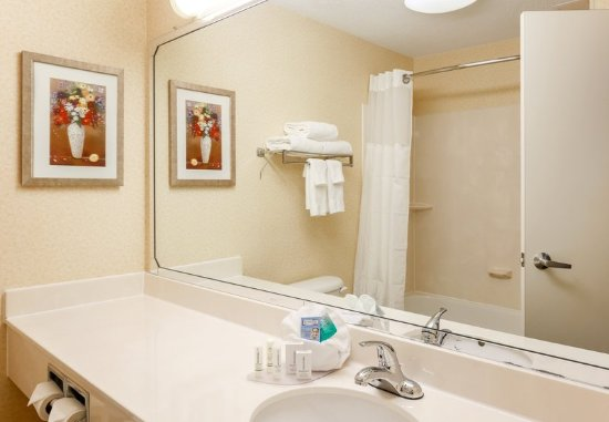 Warren, OH: Suite Bathroom