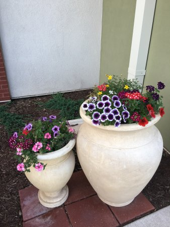 Fort Riley, KS: Beautiful flowers outside front doors