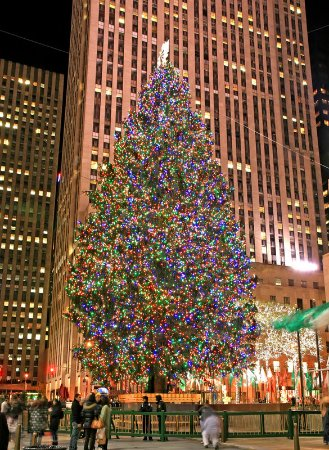 Hasbrouck Heights, NJ: Radio City Christmas Tree