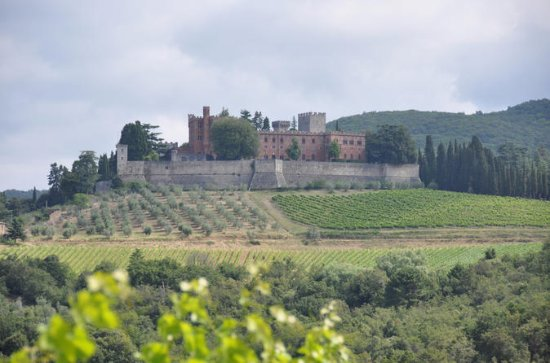 Chianti Classico wine tour - Fridays from SIENA: Chianti Classico food & wine tour