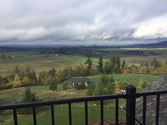 Amity, OR: Overcast day in Oregon, but still a great view from theh Sky Loft!