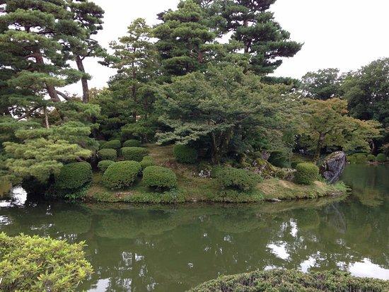 Foto de jard n kenrokuen kanazawa the hawthorn tree and for Jardin kenrokuen