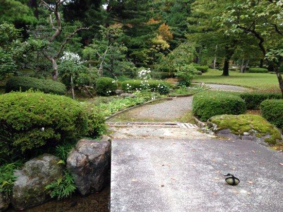Foto de jard n kenrokuen kanazawa a stone with tied rope for Jardin kenrokuen