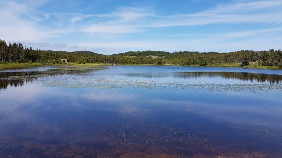 Port Rexton, Canada: A pond by the end of the trail