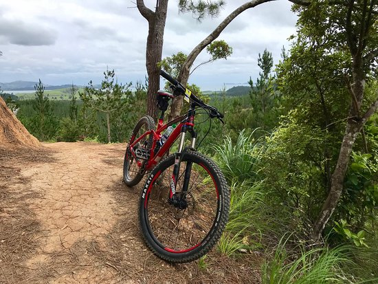‪Paihia Mountain Bike Rentals and Shuttles‬