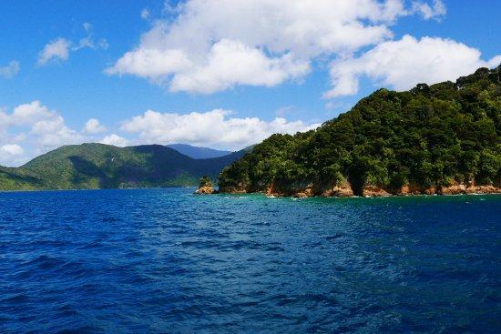 Picton, Nya Zeeland: photo3.jpg