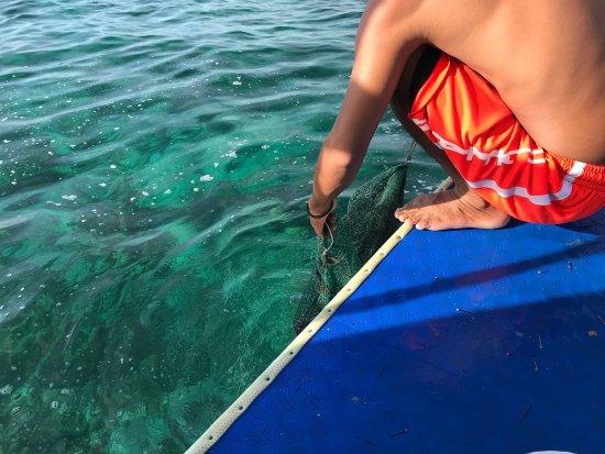 Lapu Lapu, Filippinerna: photo2.jpg