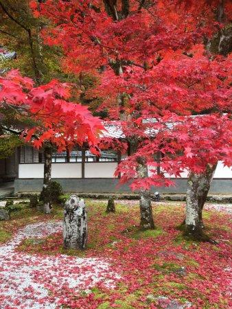 Higashiomi, Giappone: photo0.jpg