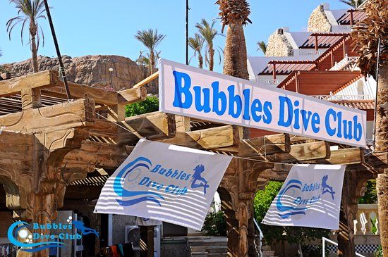 Bubbles Dive Club