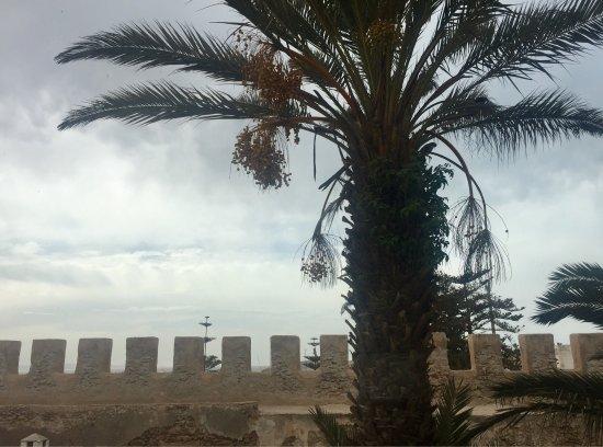 Un havre de paix blottie derrière les remparts