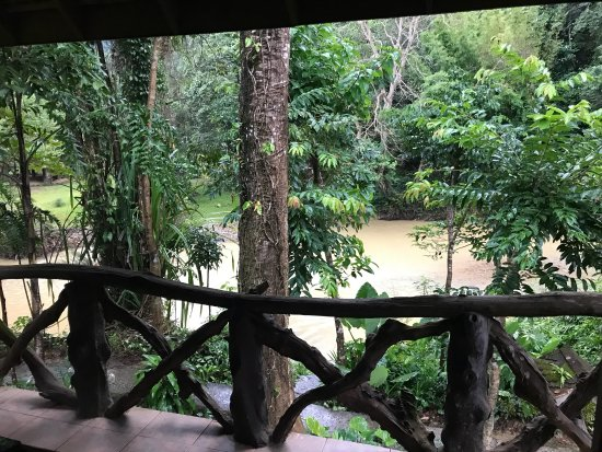 Art's Riverview Jungle Lodge: Vue depuis le balcon du bungalow vue sur la rivière