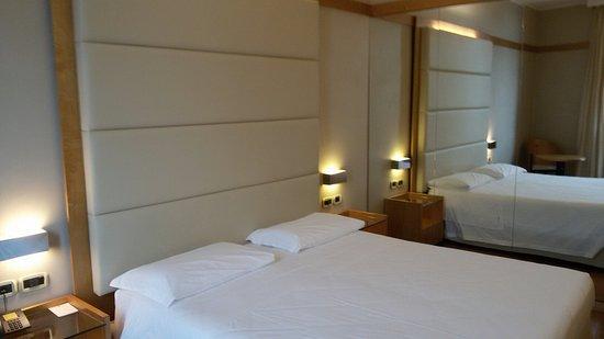 Ai Pini Park Hotel: Stanza 101