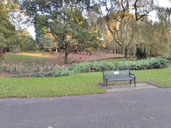 Musgrave Park