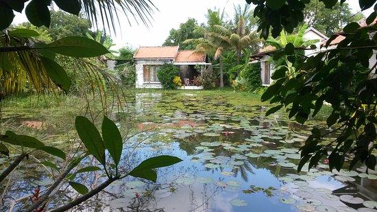 Battambang Resort: Lake view room as seen from the bar
