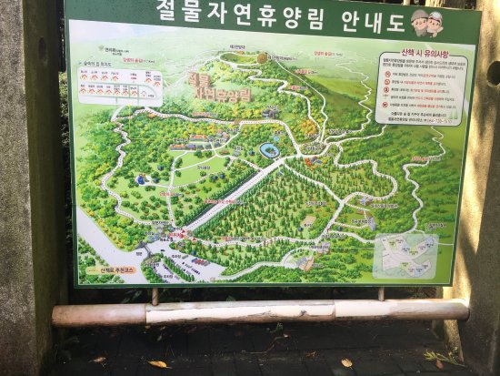 Jeolmul Natural Forest Resort: photo0.jpg