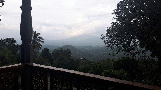 Moragolla, Sri Lanka: IMG-20171109-WA0005_large.jpg