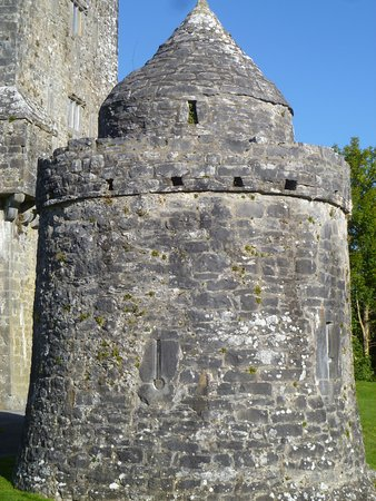 Oughterard, Irlandia: Tower at Aughnanure Castle