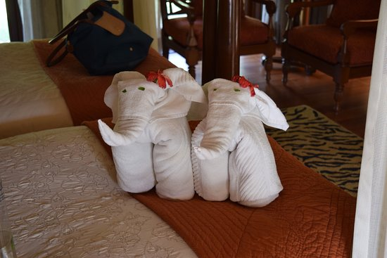 The Oberoi Vanyavilas: photo1.jpg