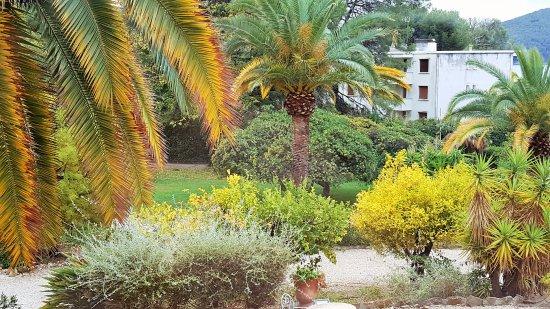 Grand Hotel Les Lecques : le jardin