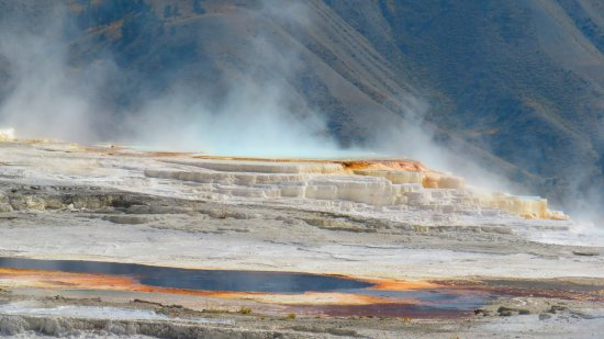 Wapiti, WY: Colors of Mammoth Hot Springs