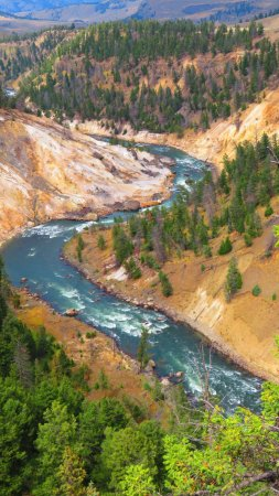 Wapiti, WY: Yellowstone River