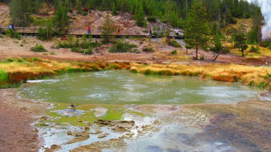Wapiti, WY: Colors of Yellowstone