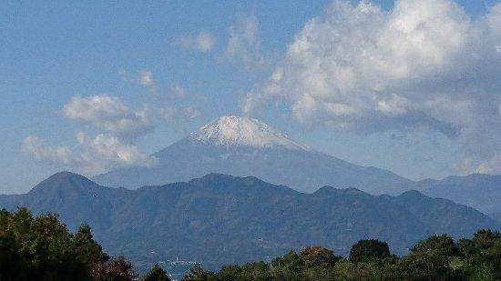 Oi-machi, Japon : DSC_3501_large.jpg