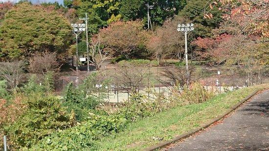 Oi-machi, Japon : DSC_3499_large.jpg
