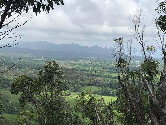 Sleeping Giant Trail: Da Giant