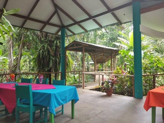 Caribbean Paradise Eco-Lodge: 20171024_095932_large.jpg