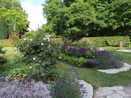 Botaniska Tradgarden