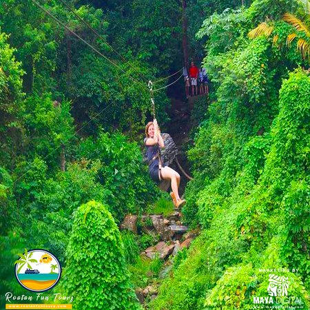 Ziplines activities in Roatan, Bay Islands is a must, enjoy the tropical forest with our staff.