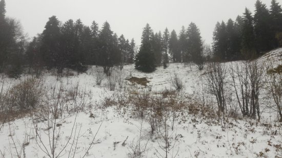 Isere, Frankrike: Neige automnale sur le tour du massif de la Chartreuse