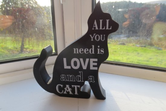 St Mullins, Ireland: There was no live cats - just this lovely sign.