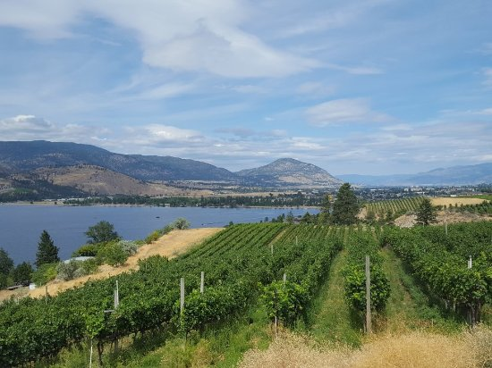 Penticton, Canada: Pentage Winery
