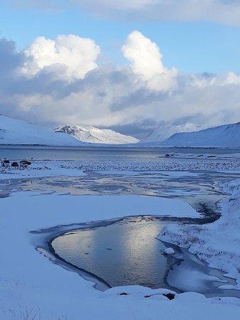 BusTravel Iceland: 20171111_134450_large.jpg