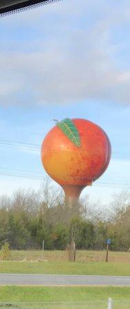 Gaffney, Carolina Selatan: photo0.jpg