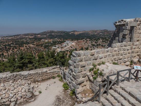 Castillo de Ajloun - ジャラシ...
