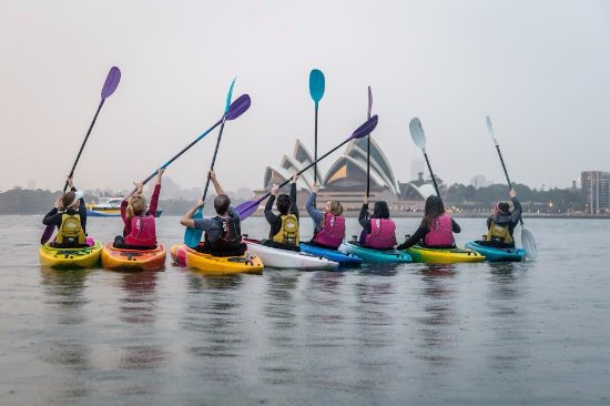 North Sydney, Australia: Paddles in the air