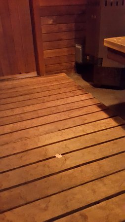 used band aid on the floor of the dry sauna picture of 100